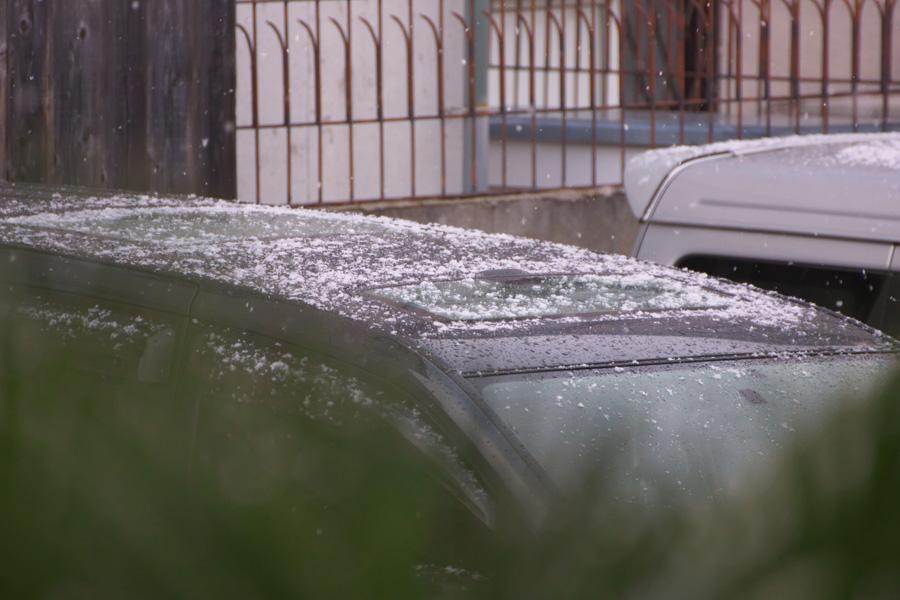 20140119-1_雪の朝_2