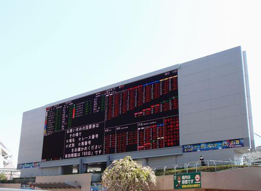 阪神競馬場2013