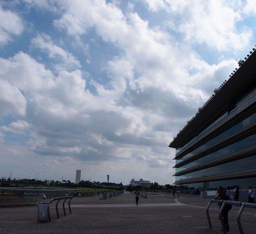 阪神競馬場20130929