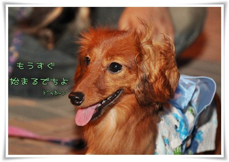 花火大会2013-3