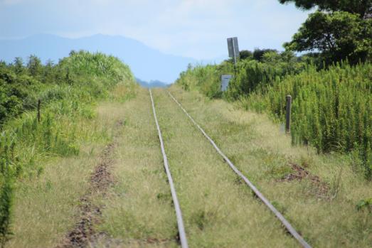130907指宿枕崎線 (111)のコピー