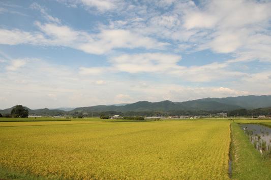 130915くま川鉄道 (113)のコピー