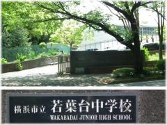 130504-013若中