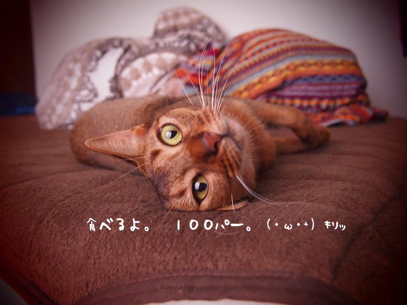 P7210069_2.jpg