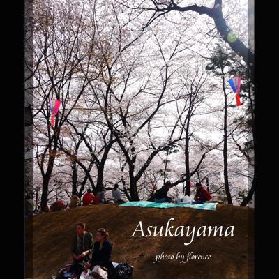 桜130304_edited-1