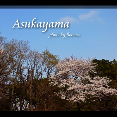 桜130305_edited-1