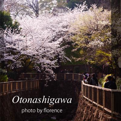 桜130307_edited-1