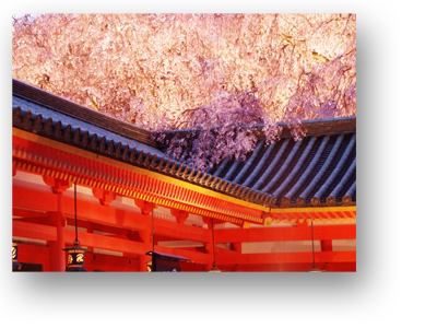 平安神宮130403_edited-1