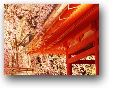 平安神宮130407_edited-1
