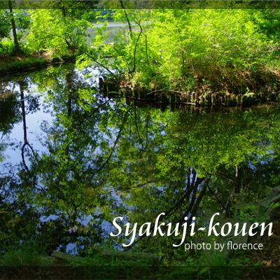 石神井公園130501_edited-1