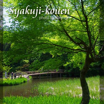 石神井公園130502_edited-1