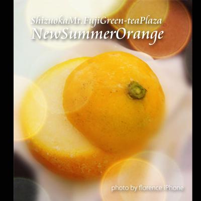 ニューサマーオレンジ130601_edited-1