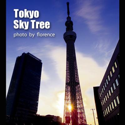 東京スカイツリー140102