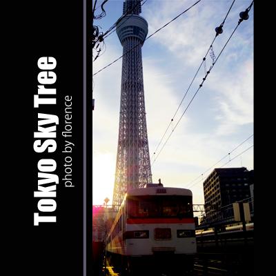 東京スカイツリー140103