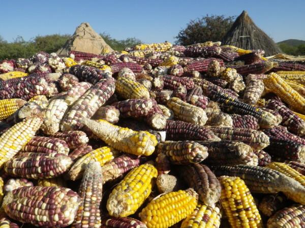 20120510_08_Himba_Village.jpg
