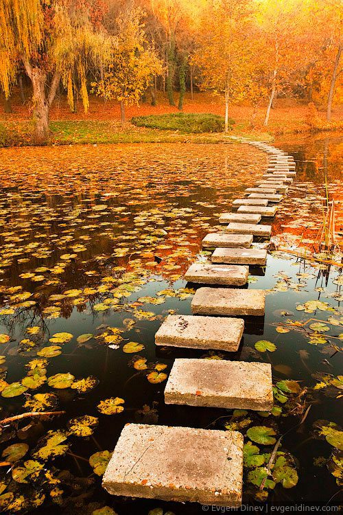 awesome-autumn-10.jpg