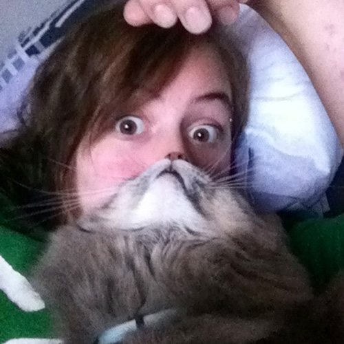 catbeards5.jpg