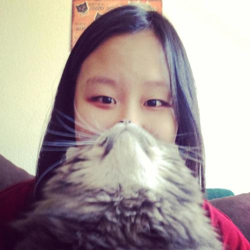 catbeards7.jpg