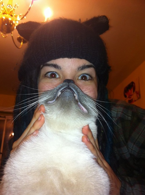 catbeards8.jpg