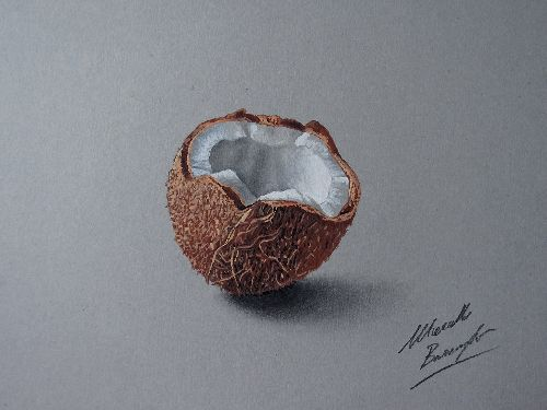 cocco_by_marcellobarenghi-d5xsb93.jpg
