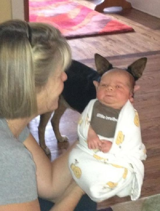 funny-perfect-timing-photo-baby-puppy.jpg