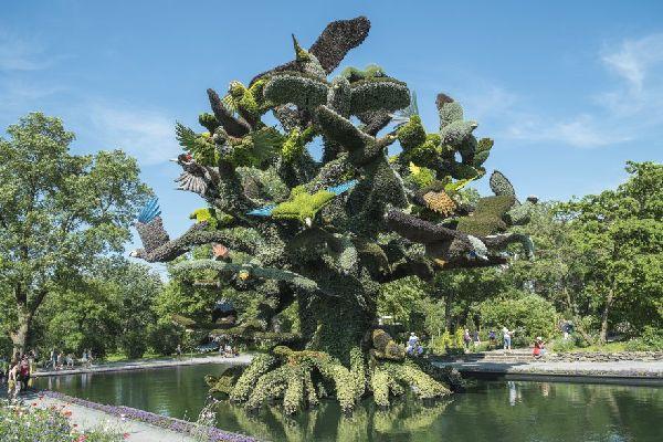montreal-international-mosaicultures-2013-3.jpg