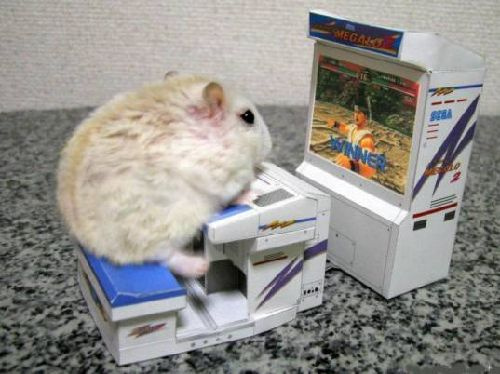 mouse-video-game.jpg