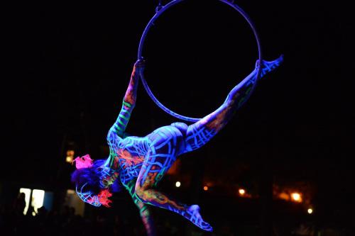 world-bodypainting-festival-2012-06.jpg
