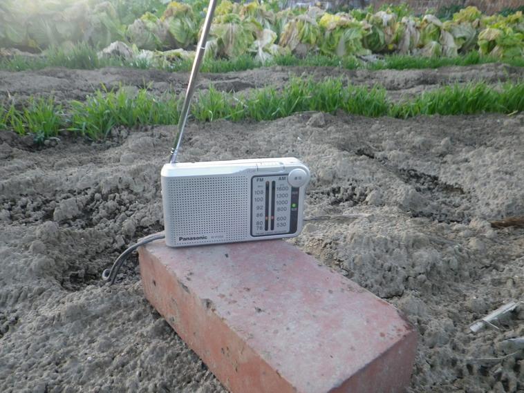 ラジオ14_01_03