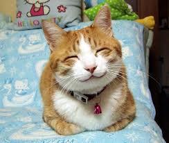 笑顔imgres