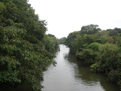 20130831利根川 (3)