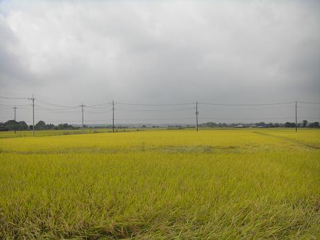 20130831利根川 (4)