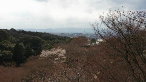 京都13_convert_20130404231010