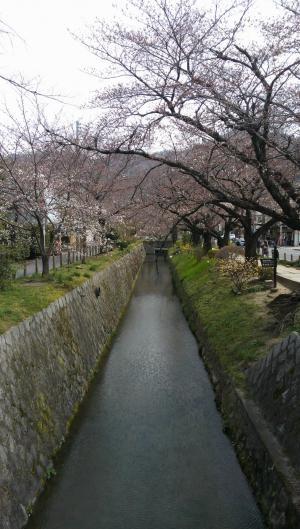 京都32_convert_20130427222135