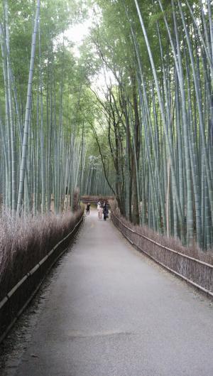 京都30_convert_20130427222048