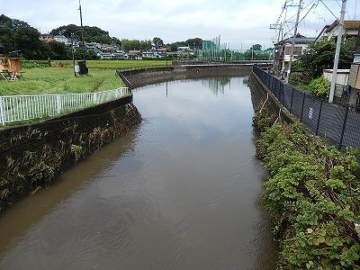 引地川大山橋付近01