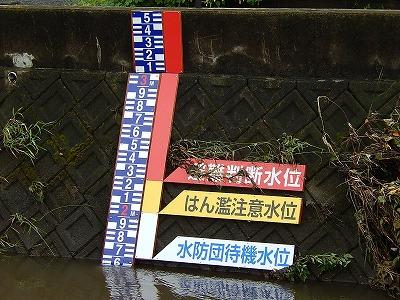 引地川大山橋付近03