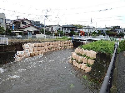 引地川福田8号橋付近01