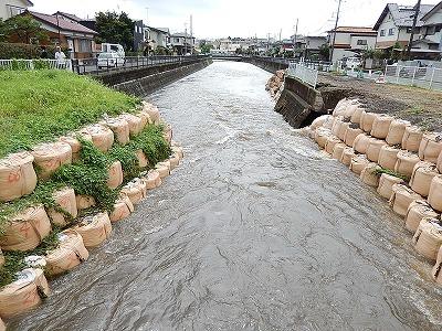 引地川福田8号橋付近04