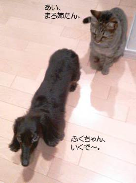 NCM_4489.jpg