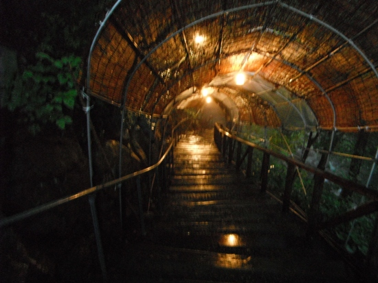 2011東北キャラバン001249