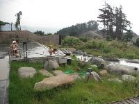 2011年9月西湖キャンプ08