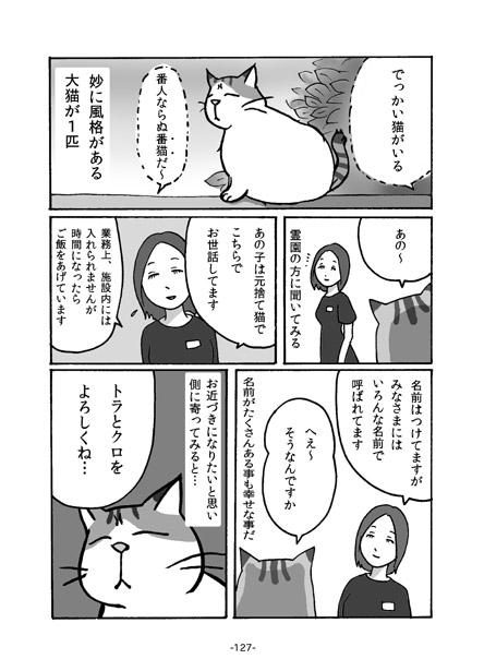kiji127.jpg