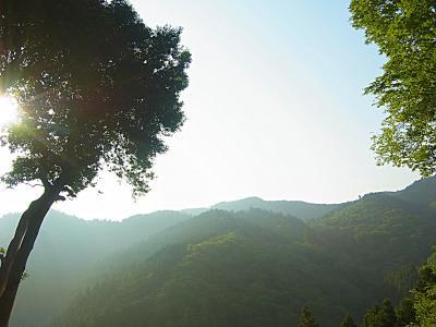 130608朝の景色