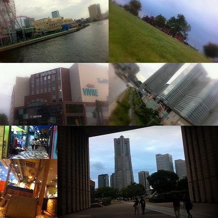 My Photo Stream5