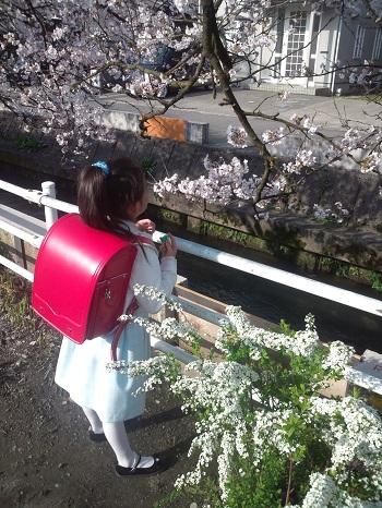 2013.04入学式