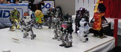 ロボットプロレスinアキバ大好き祭り