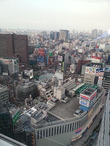 新宿28階より