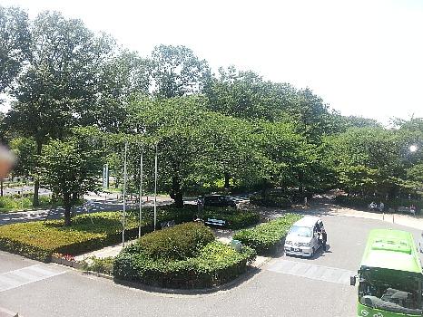 病院からの緑と空縮小