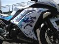 bike_race250